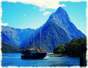 new zealand road trip milford sound harbour