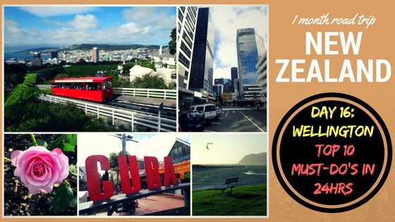 Road Trip New Zealand day 16 Wellington top 10 must-do's