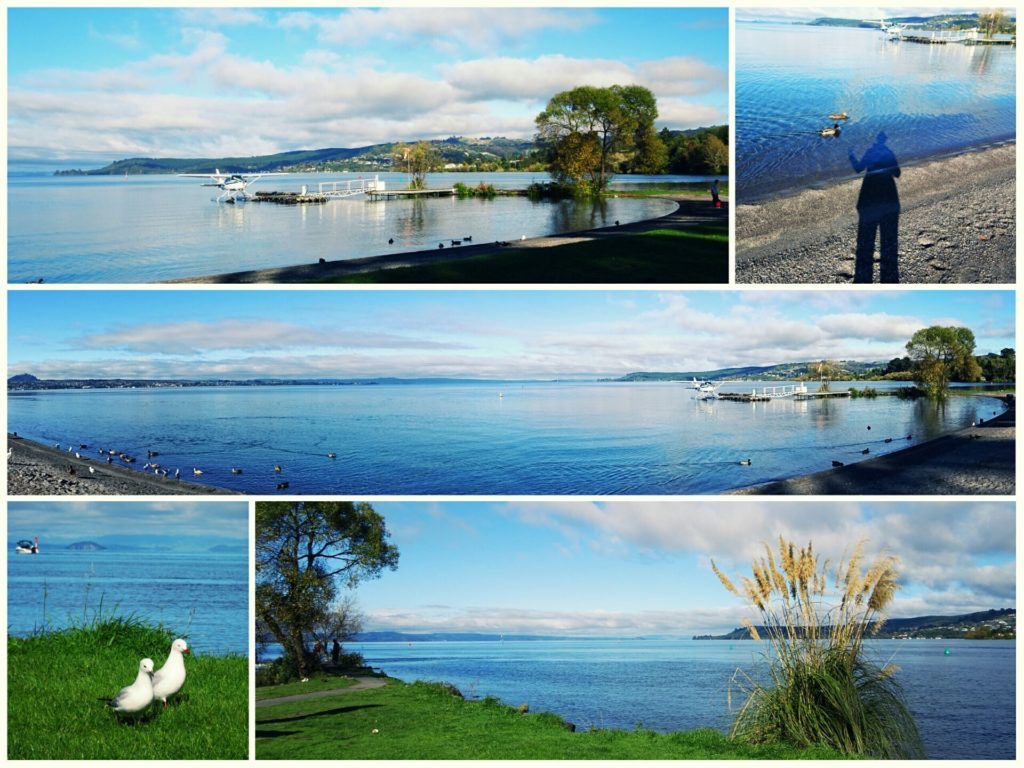 new-zealand-roadtrip-lake-taupo-freedom-camping