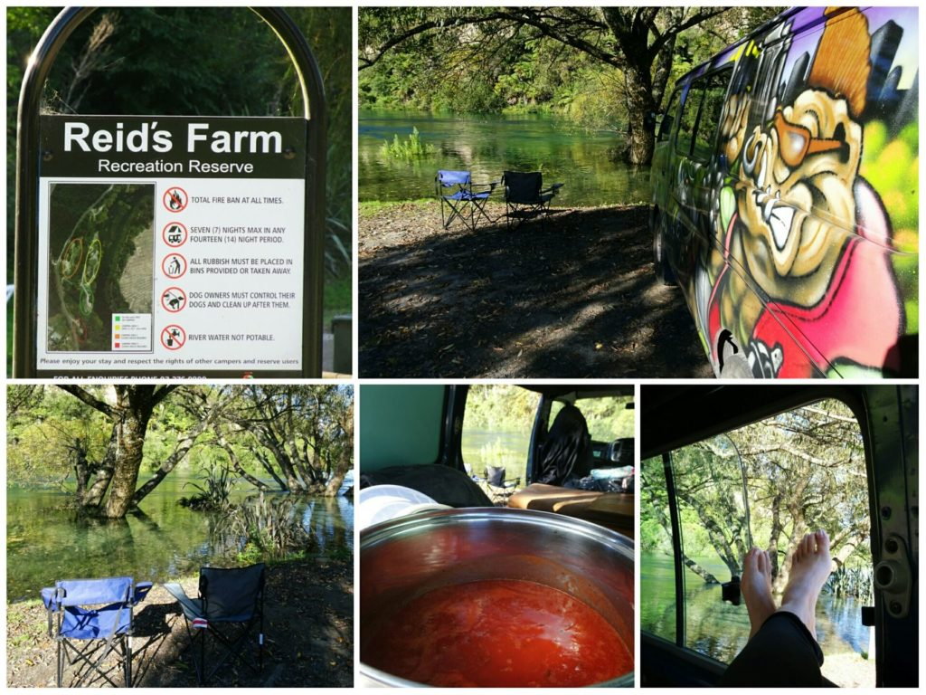 new-zealand-roadtrip-lake-taupo-freedom-camping-reids-farm