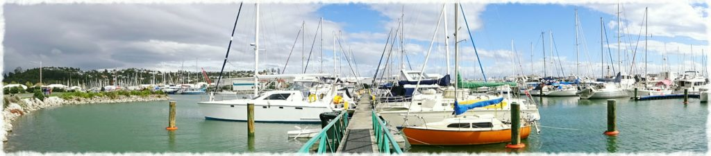 new-zealand-roadtrip-nelson-marina-panorama