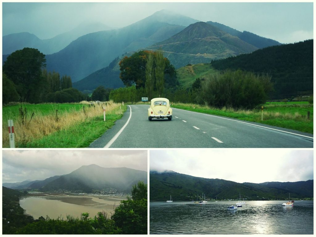 new-zealand-roadtrip-nelson-picton-wellington