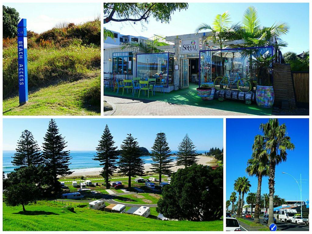 new-zealand-roadtrip-tauranga-beach-access