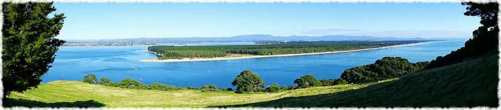 new-zealand-roadtrip-tauranga-mount-maunganui-hillside-panorama