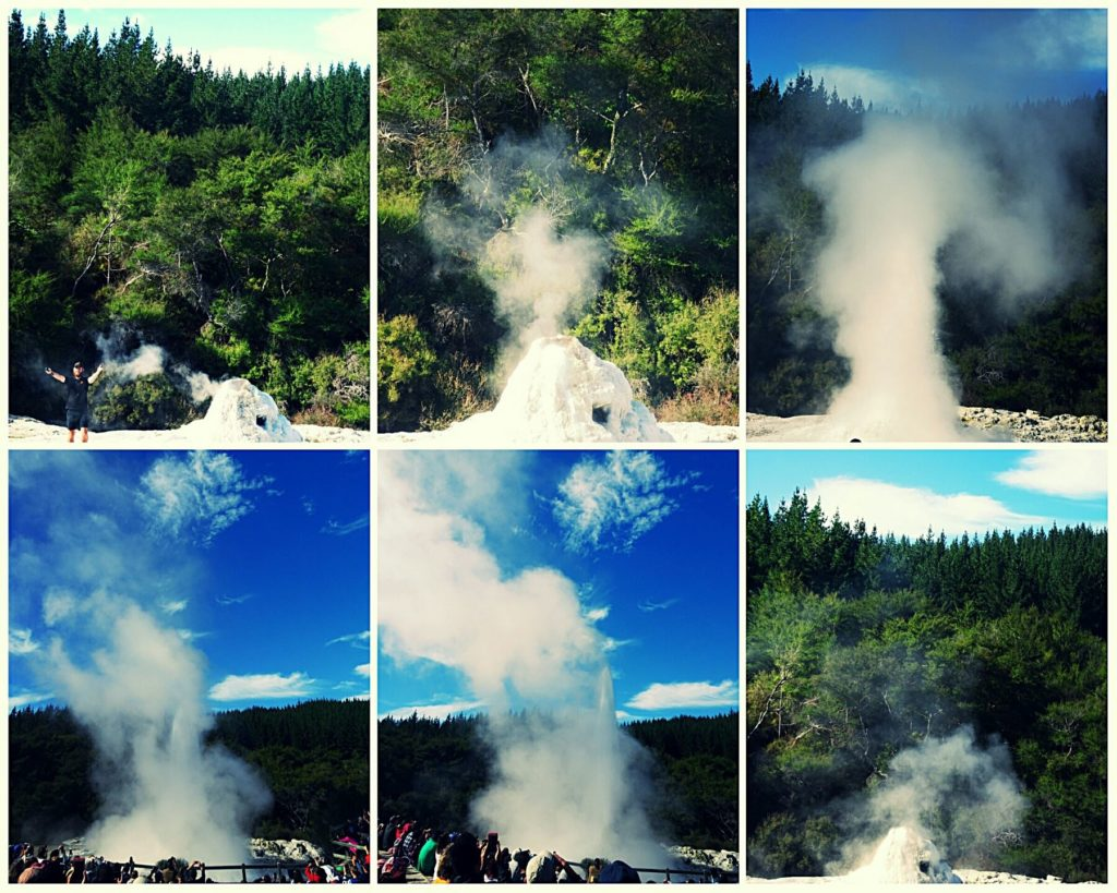 new-zealand-roadtrip-wai-o-taupu-lady-knox-geyser
