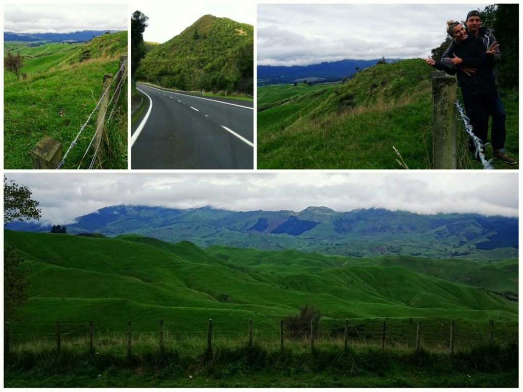 new-zealand-roadtrip-wellington-napier-green-hills
