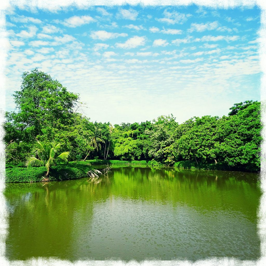 best things bangkok green bike tour khuean khan park