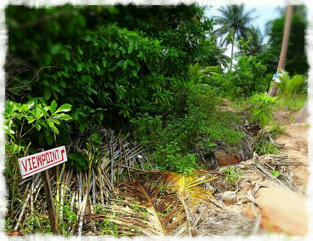 koh-tao-scooter-tour-end-of-the-road-two-view-viewpoint