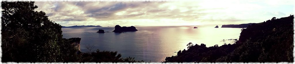 new-zealand-roadtrip-cathedral-cove-car-park-panorama