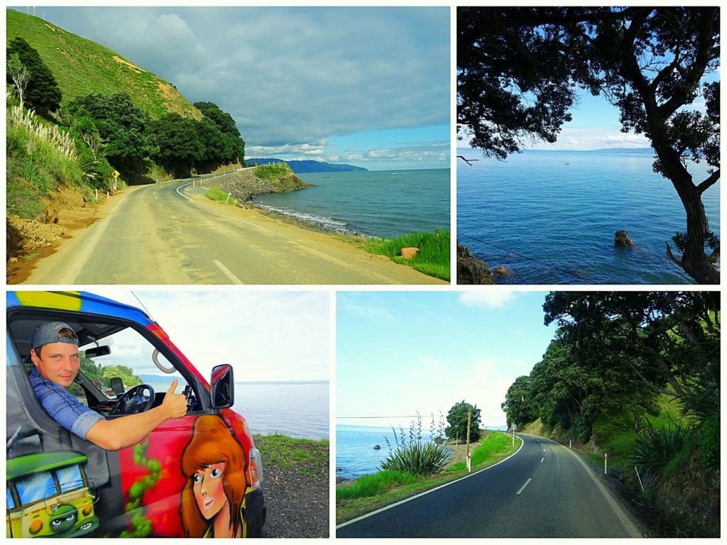 new-zealand-roadtrip-cathedral-cove-coromandel-thames-coast-road