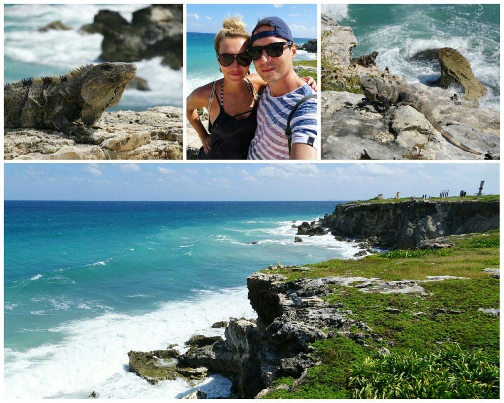 day-trip-isla-mujeres-punta-sur-iguanas