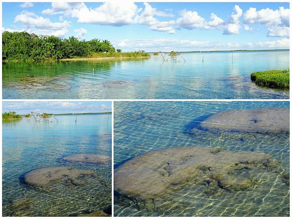 guide-bacalar-lagoon-cocalitos-stromatolitos