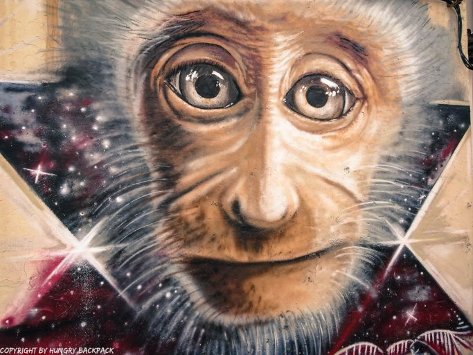 Disco Monkey street art mural Penang