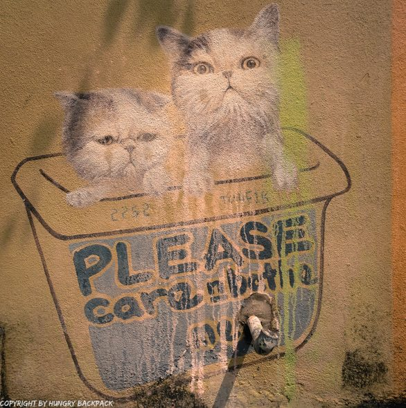 Please care and bath me cats street art mural Penang