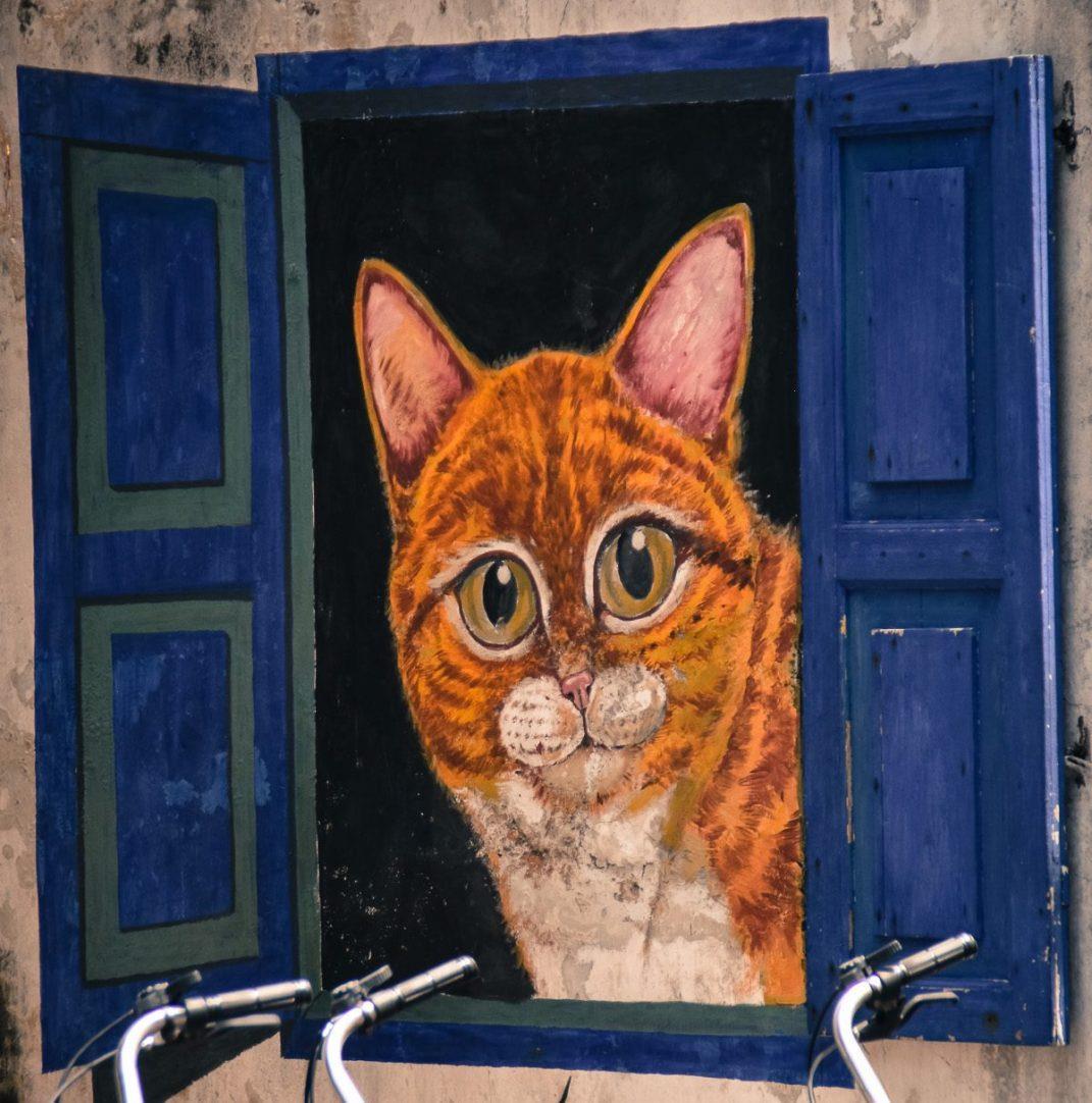 cat looking out of window street art mural Penang