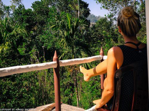 Ella accommodation_Restful Homestay_enjoying jungle views from terrace