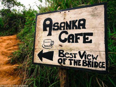 Ella hikes nine arch bridge_asanka cafe