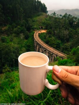 Ella hikes nine arch bridge_coffee with a view from asanka cafe_