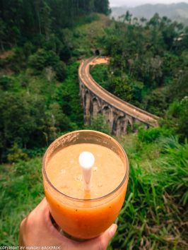 Ella hikes nine arch bridge_juice with a view from asanka cafe_