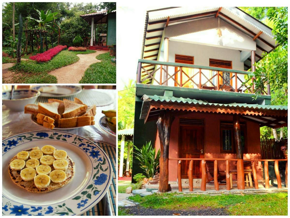 green-park-safari-house