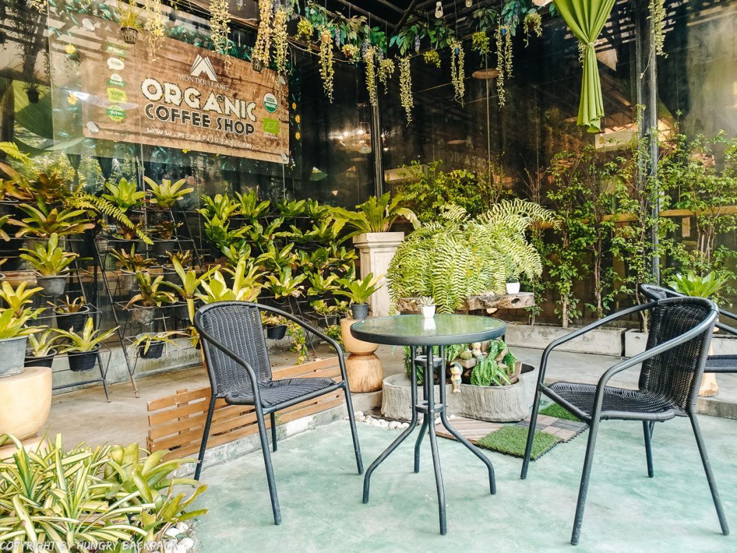 Cafes to work from_chiang mai_Santitham_MDL cafe_garden patio