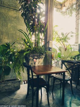 Cafes to work from_chiang mai_Santitham_Passion Project_greenery