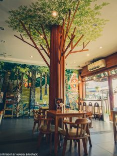 Cafes to work in Chiang Mai_Old Town_Into the woods