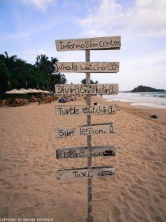 Mirissa beach-things to do