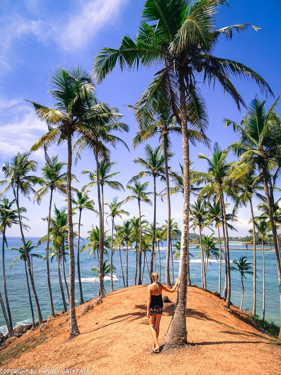 Mirissa_coconut hill view