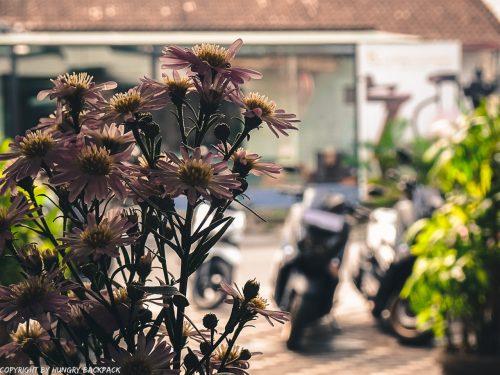 work-friendly cafes Canggu_Satu-Satu_flowers