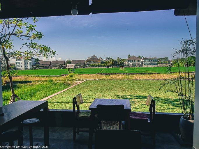 work-friendly cafes Canggu_disctrict cafe_views