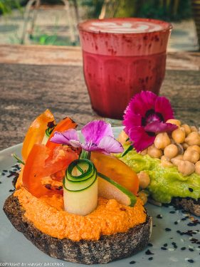 work-friendly cafes Canggu_mocca cafe_hummus toast detail