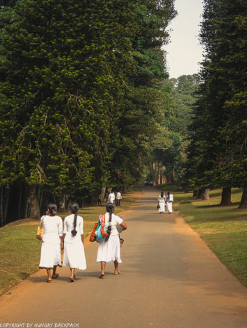 Botanical Garden Kandy_locals wearing white
