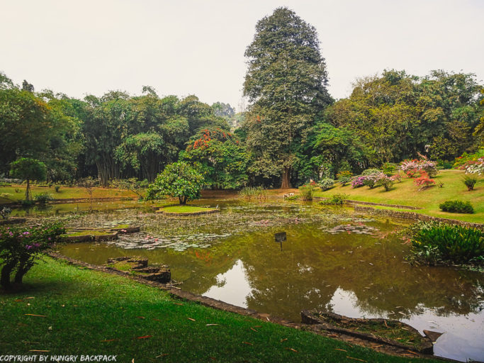 Exploring Kandy by Tuk Tuk_Botanical Garden Kandy Lake