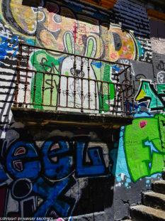 orto Streetart_Rua Madeira_graffiti rabbit