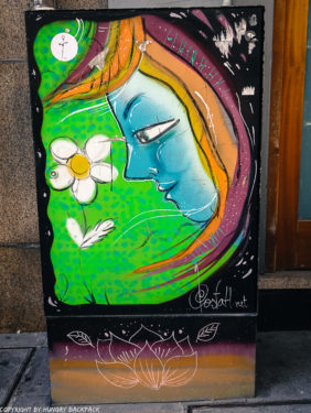 Porto street art_Rua das Flores_electrical box_costah flower girl2