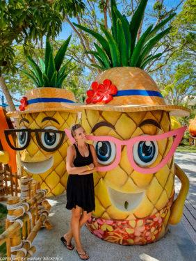 Aquatopia water park_fun sculptures Pineapple